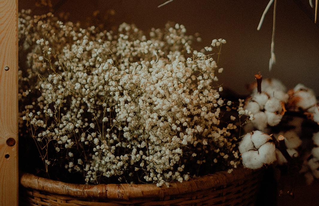 Flowers-Ritual-gypsophile